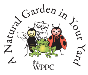 Natural Garden in Your Yard logo